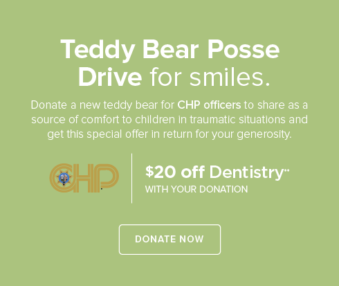 Teddy Bear Posse - Rocklin Modern Dentistry